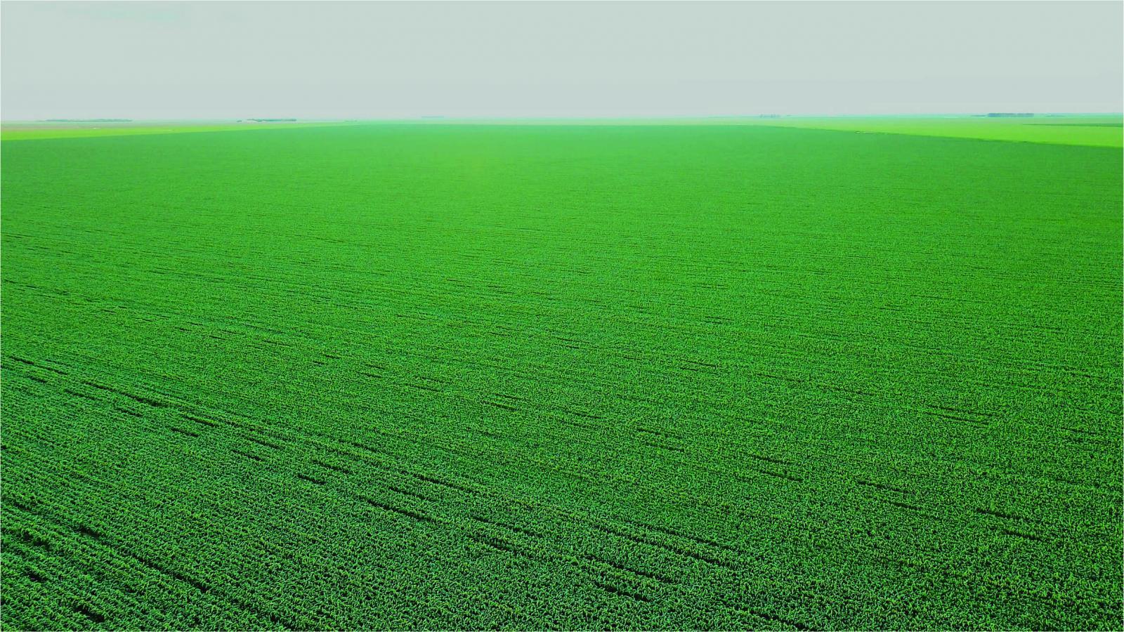 images/2018/04/carroll-farms-farmstead-45-gb1-1523484939mtuymzq4ndkzoq.jpg