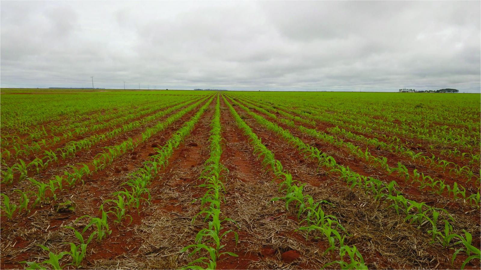 images/2018/04/carroll-farms-farmstead-45-gb1-1523484993mtuymzq4ndk5mw.jpg